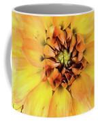 Everything Has Beauty Coffee Mug