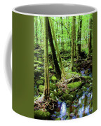 Evolution Of A Forest In Spring  Coffee Mug