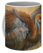 Evolving Sandhill Crane Beauty Coffee Mug