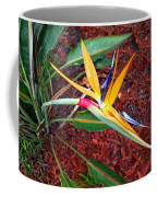Exotic Bird Of Paradise Coffee Mug