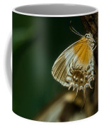Exotic Butterfly On Tree Bark Coffee Mug