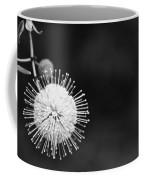Exploding Blossom Coffee Mug