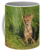 Exploring The Outside World Coffee Mug