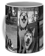 Expressive Siberian Huskies Collage C4517 Coffee Mug by Mas Art Studio