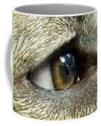 Eye Of The Canine Coffee Mug