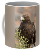 Eye Of The Golden Eagle Coffee Mug