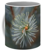 Eye Of The Pine Coffee Mug