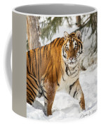 Eye Of The Tiger Coffee Mug