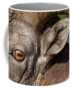 Eyes Are The Place To Start... Coffee Mug