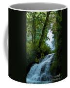 Eyes Over The Flowing Water Coffee Mug