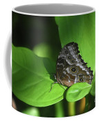 Eyespots On The Closed Wings Of A Blue Morpho Butterfly Coffee Mug