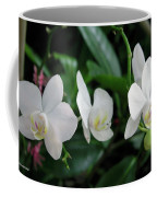 F11 Orchid Flowers Coffee Mug