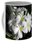 F13-plumeria Flowers Coffee Mug