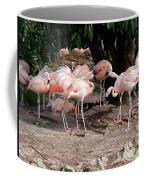 Fabulous Flamingos Coffee Mug