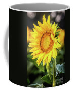 Just Another Pretty Face Coffee Mug