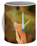 Face Of The Dragon Coffee Mug