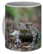 Face To Face With A Fowler Toad  Coffee Mug
