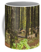 Faces In The Woods Coffee Mug