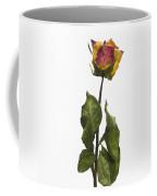 Faded Rose Flower Coffee Mug