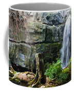 Fairy Waterfall Coffee Mug