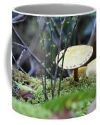 Fairy's Umbrella Coffee Mug