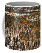 Fall And Winter On The Same Day Coffee Mug