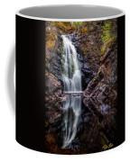 Fall At Fall River Falls Coffee Mug