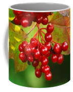 Fall Berries 2 Coffee Mug