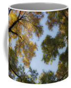 Fall Canopy In Virginia Coffee Mug