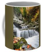 Fall Color Bash Coffee Mug