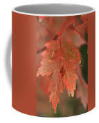Fall Color In Softness Coffee Mug