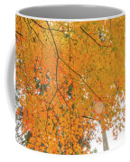 Fall Color Maple Leaves At The Forest In Aichi, Nagoya, Japan Coffee Mug