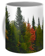 Fall Colors Are Starting Coffee Mug