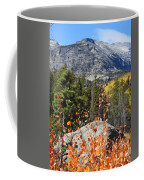Fall Colors In Rocky Mountain National Park Coffee Mug