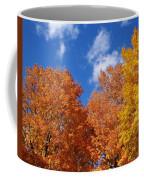 Fall Colors In Spokane Coffee Mug