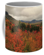Fall Colors In White Mountains New Hampshire Coffee Mug