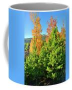 Fall Comes To Dillon Colorado Coffee Mug
