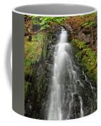 Fall Creek Falls 3 Coffee Mug