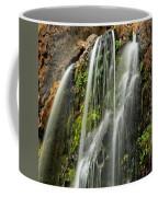 Fall Creek Falls 4 Coffee Mug