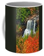 Fall Falls Coffee Mug