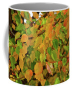 Fall Foliage II Coffee Mug