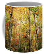 Fall Foliage On The Hike Up Mount Monadnock New Hampshire Coffee Mug