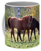 Horses Fall Grazing Coffee Mug