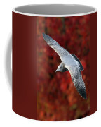 Fall Gull Coffee Mug