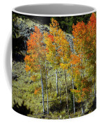 Fall In Colorado Coffee Mug