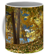 Fall In Kaloya Park 3 Coffee Mug