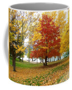 Fall In Kaloya Park 5 Coffee Mug