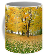Fall In Kaloya Park 7 Coffee Mug