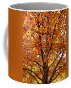 Fall In Kayloya Park 2 Coffee Mug