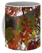 Fall In Virginia Coffee Mug